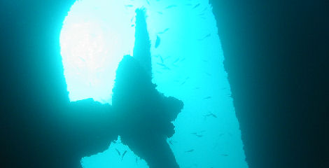 dive_sites_star_garret_wreck