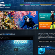 http-www-seidiving-org-dive-with-mermaid-divers-center-aruba